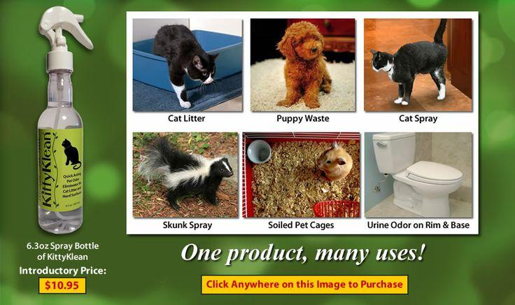 Pet odor eliminator, Organic pet odor eliminator, Non toxic pet odor eliminator, Eco friendly pet odor eliminator, All natural pet odor eliminator, Pet odor remover, Organic pet odor remover, Non toxic pet odor remover, Eco friendly pet odor remover, All natural pet odor remover, Bio degradable pet odor remover --> http://www.kittyklean.com/