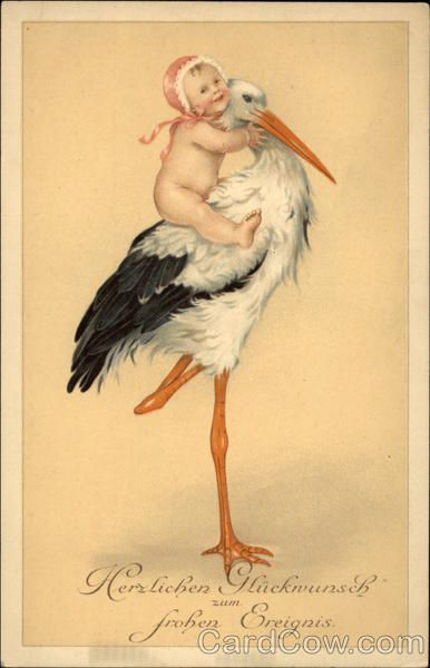 Baby in Pink Bonnet Riding Stork Babies Storks