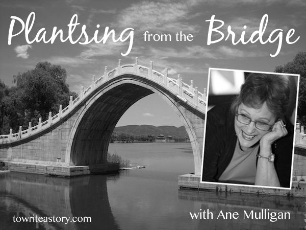 Plansting from the Bridge with Ane Mulligan