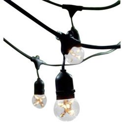 Transitional Outdoor Rope And String Lights by Buildcom