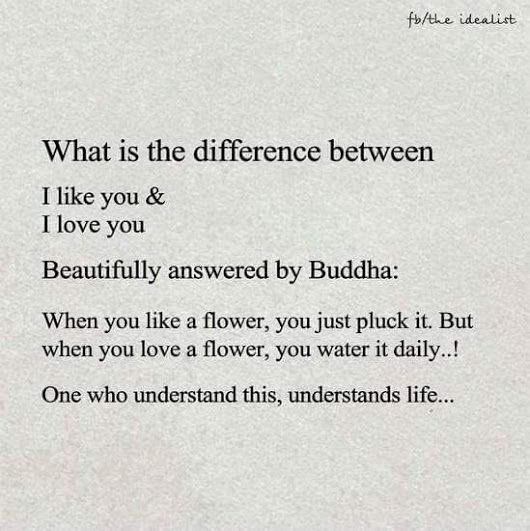 The difference between I like you and I love you.