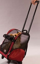 Roll Around Pet Carrier | This carrier is an approved airline pet carrier (small and medium only) that makes traveling with your pet easy with this 4 in 1 design. Comes in 3 colors.  Find it at TripsWithPets.com.