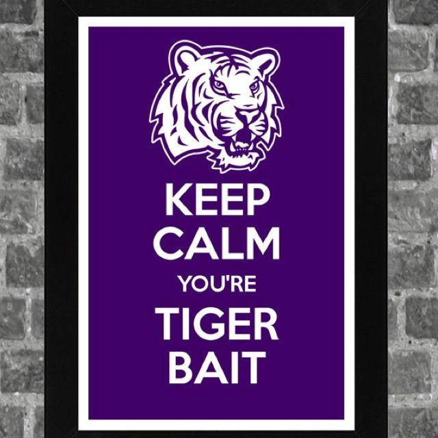 LSULsu Baby, Forever Lsu, Tigers Beats, Tigers Bait, Lsu Tigers, Lsu Louisiana, Tiger Beat, Geaux Tigers, Bull Dogs