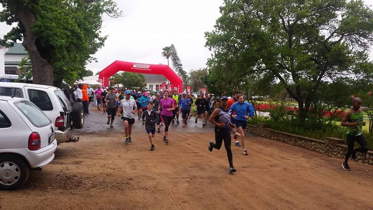 #RunTheVines at Landskroon - start of 10km run!