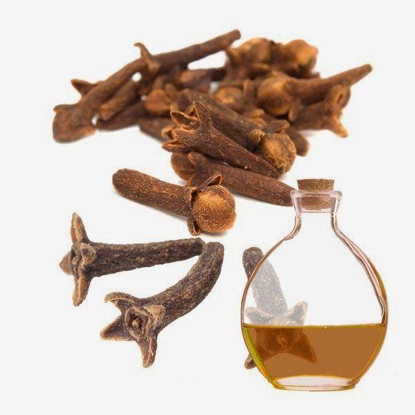 Receita de óleo de cravo-da-índia: para combater micose de unha e frieira – | Lá na Roça