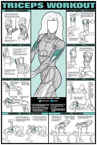 Tricep workout - I do all of these but bingo wings are still there!!!