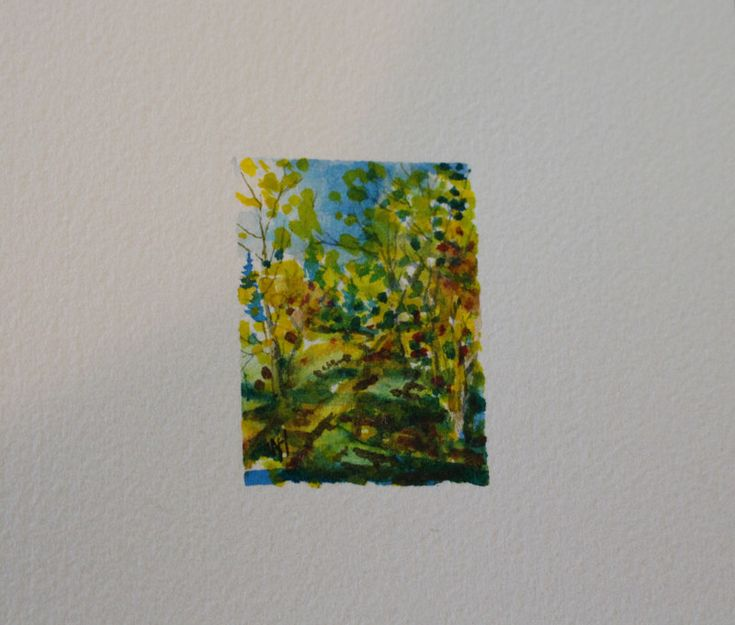 Trans Canada Trail at Douglas Taylor Park. A Series of Miniatures Number 2. A Glimpse into my world.  Trans Canada Trail at Douglas Taylor Park, Abbotsford, BC  Size; 1.6 in. X 1.75 in. Watercolour, Matted