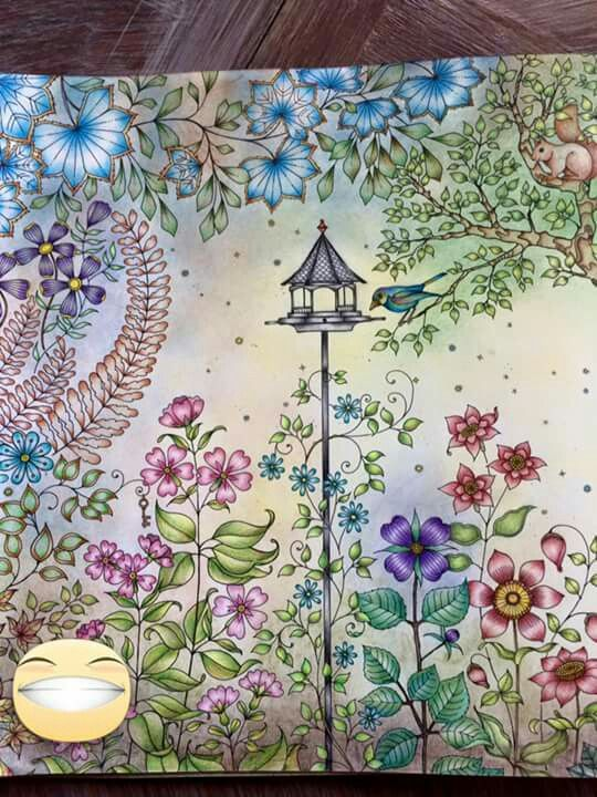 379 best images about johanna basford on pinterest for El jardin secreto johanna basford