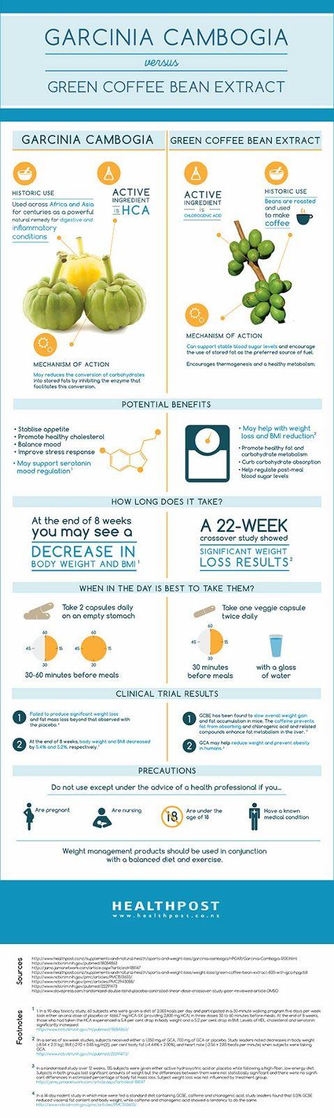 Garcinia Cambogia vs. Green Coffee Bean Extract [Infographic]