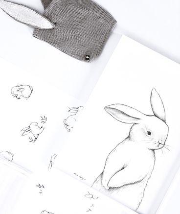 Affiche encadrée petit lapin