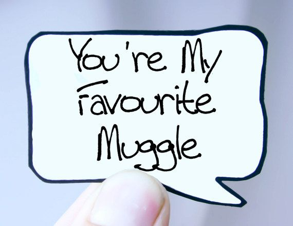 Harry Potter Muggle Quote. Funny Harry Potter Magnet