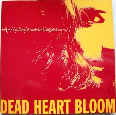 fotografie e altro...: Dead Heart Bloom - CD musicale America