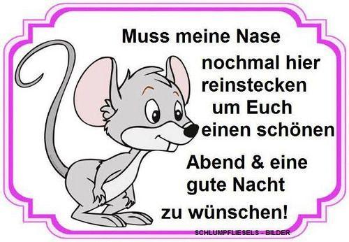 Good Morning In German Pronunciation : Best german quotes images on pinterest smileys