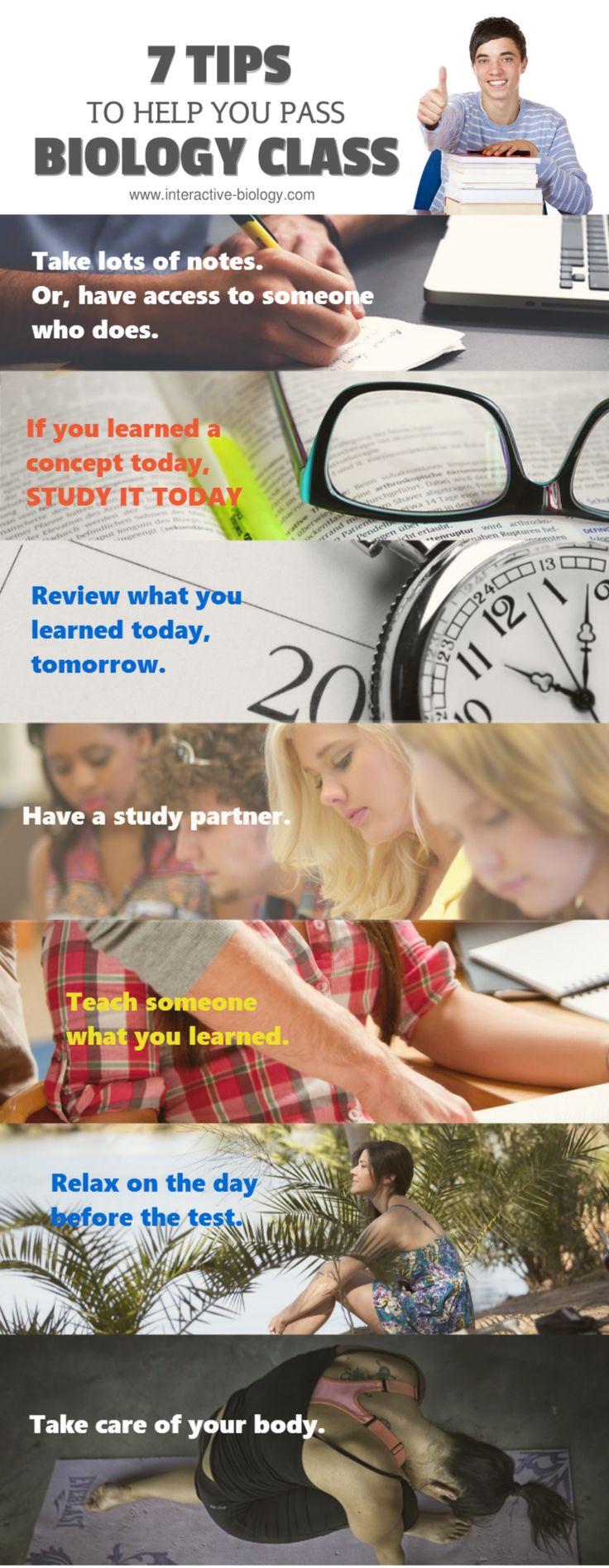 Infographic7 TipsPass Your Biology Class 15 best
