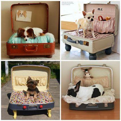 Faça você mesmo: utilize malas antigas e crie uma linda cama para seu pet. Clique na imagem e leia mais dicas de decoração para seu pet.