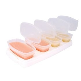 4oz. Baby Cube Baby Food Containers BPA Free. I use these and they are great!