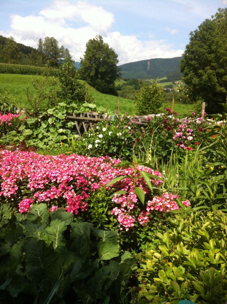 Wonderful garden in Villabassa (Bz)