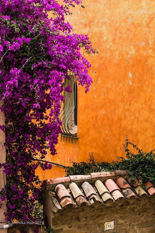 Provence toujours : Photo                                                                                                                                                      Plus