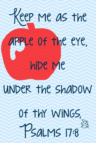delightthyselfalsointhelord:  Psalm 17:8 Keep me as the apple of the eye, hide me under the shadow of thy wings, (In the original Hebrew the word translated as wings here is the same word Ruth used when she asked Boaz to spread his skirt/garment over her and become her kinsman redeemer )