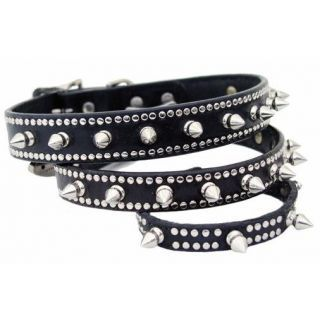 Spikes pet collar by Max & Molly http://www.groovyposhpets.com