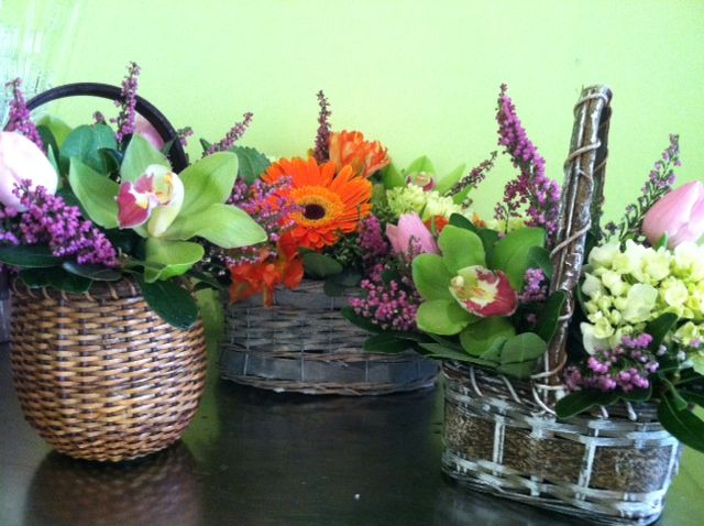 Loving these sweet baskets with orchids, gerbera daisies, tulips, and hydrangea!