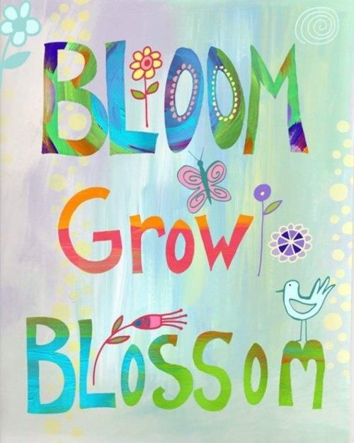 Bloom Quotes Pleasing Best 25 Blossom Quotes Ideas On Pinterest  Quotes About Flying