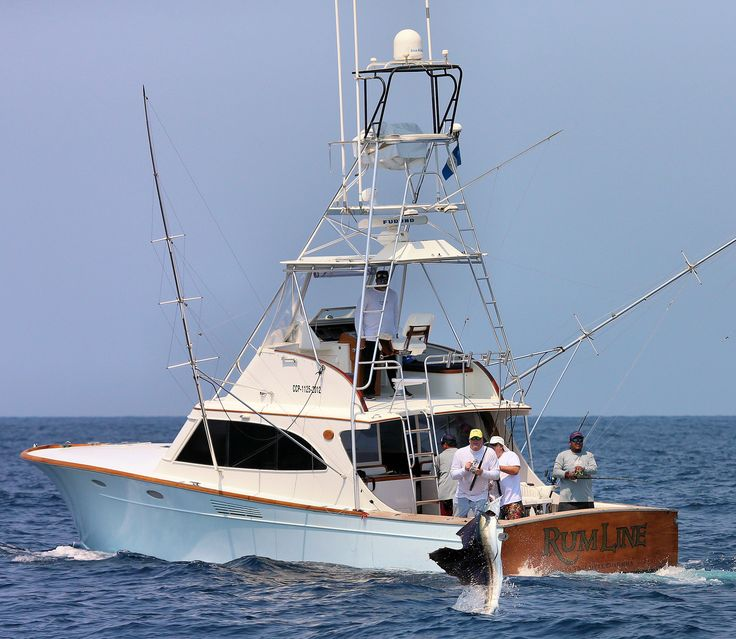 Gamefisherman dcn charter boat pacific ocean sailfish for Sport fishing charters