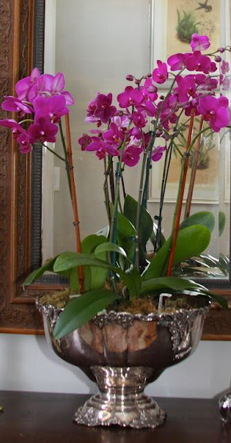 The silver punchbowl works well with orchids in it.