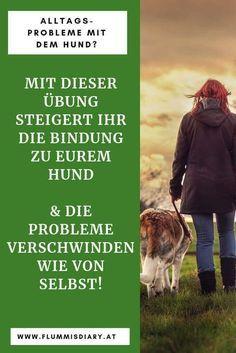 ➡ Hundebindung aufbauen und trainieren – eine Anleitung die garantiert funktioniert – Sarah Katey