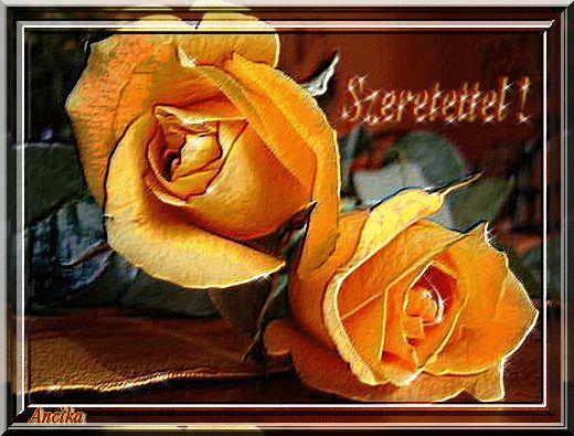 Sárga rózsák Ancustól