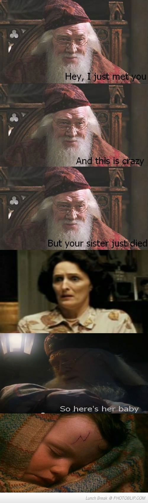 Dumbledore sings a parody of Call Me Maybe to Petunia👌✨🐷