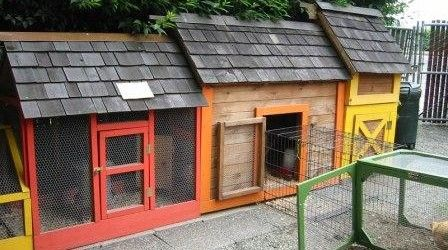 10 inspiring urban chicken coop designs for Happy Hens | The Poultry Guide