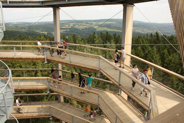 U nás na kopečku: Tip na výlet: Stezka mezi korunami stromů