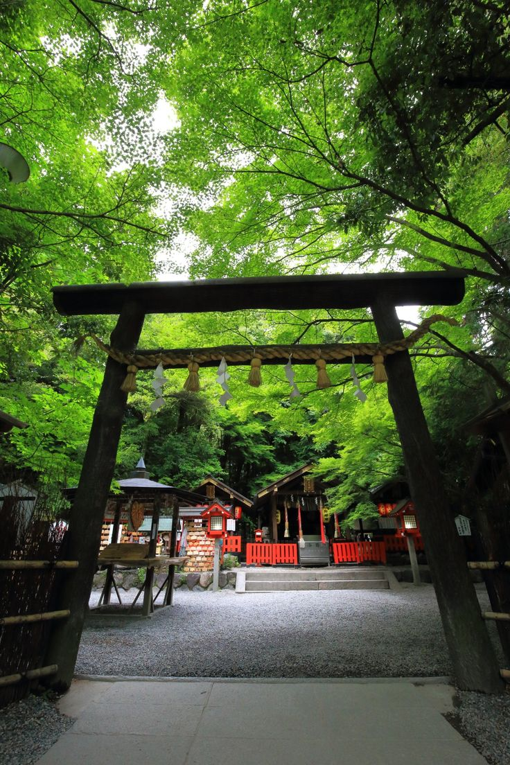 黒木鳥居 野宮神社 京都 縁結び 青もみじ Kyoto