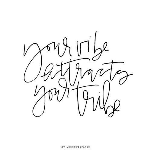 Your vibe attracts tribe inspirational quotes