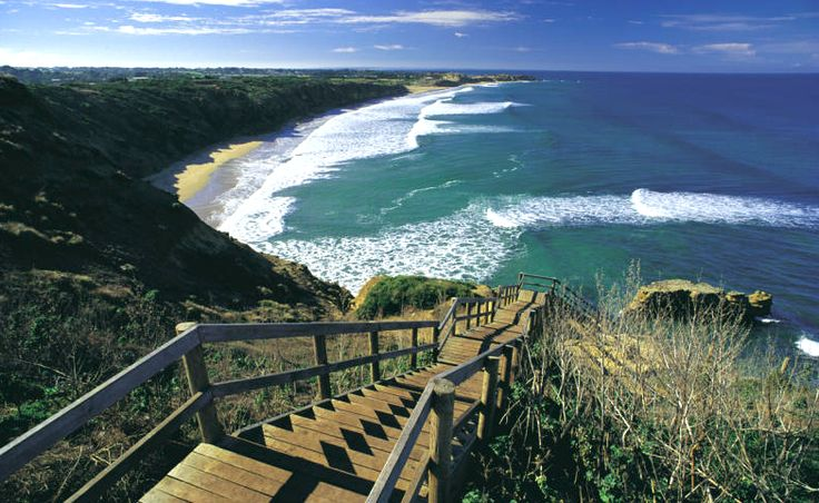 Near Melbourne, there are many great walking tracks that are within easy reach of a car park or public transport. Here are some of our favourites.