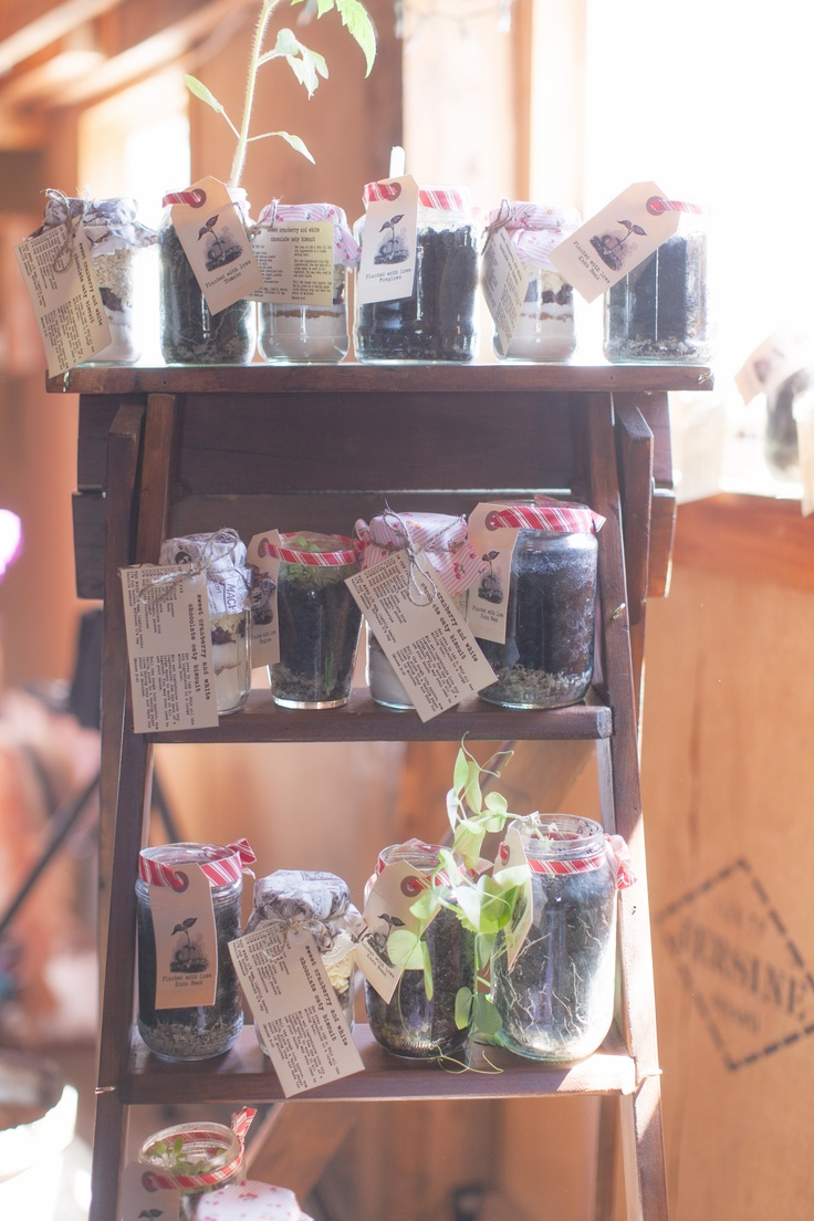 A Vintage & Pretty rustic wood ladder used as a shelf for baking & plant favours.    Photography by Candy Capco