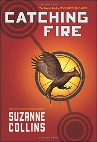 What is the book catching fire about summary