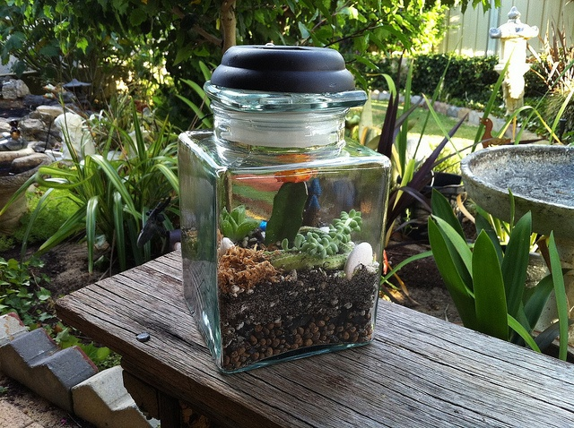 how to make a sealed terrarium
