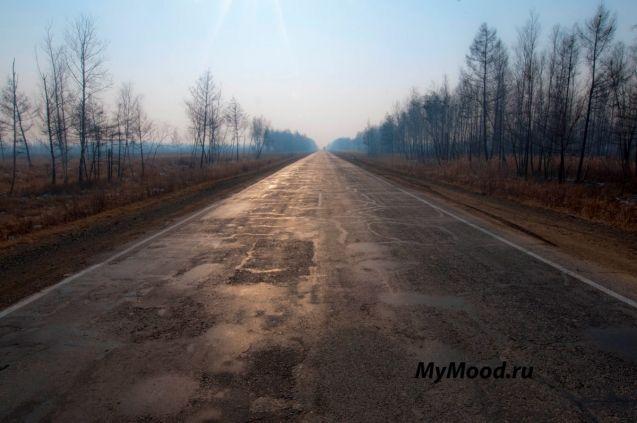 Дорожное настроение передается дорожным пейзажем и сразу вспоминаются дальние путешествия на машине