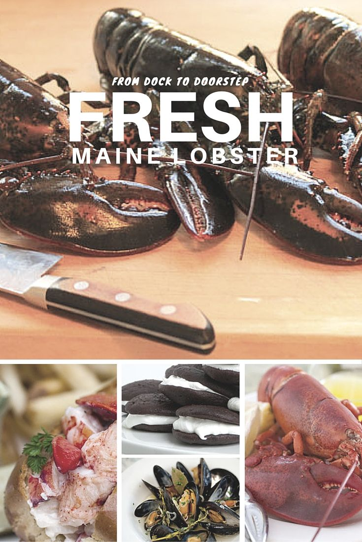 Everyone knows the best lobster comes from Maine! Our hand-selected live Maine lobster comes straight from the icy waters of Northern Maine to your doorstep. Live lobsters are priced daily at market and delivered via overnight shipping. Each shipment of live Maine lobsters is delivered in a specially insulated box with frozen gel packs and of course, directions on to prepare and EAT live Maine lobsters! Check out our Cyber Monday Specials Here.
