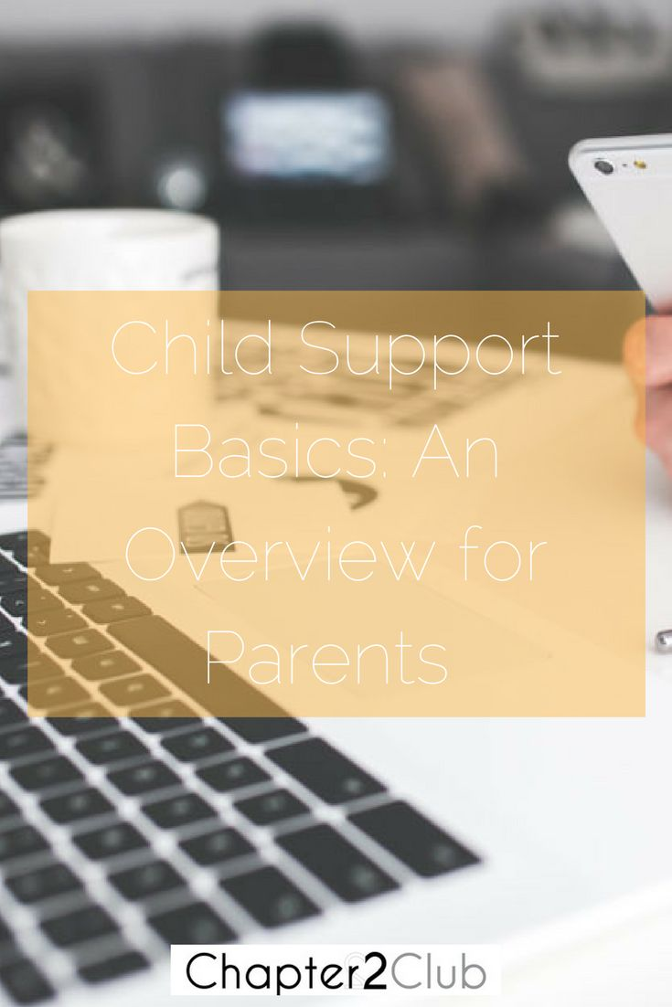 Child Support Basics An Overview for Parents