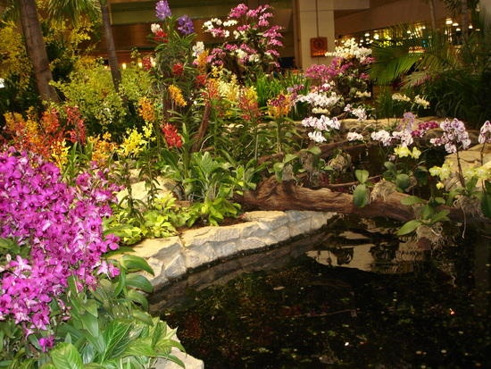 Orchids Garden Design queer gardens vizcaya gardens miami sister arts gardens poems art community Orchid Garden