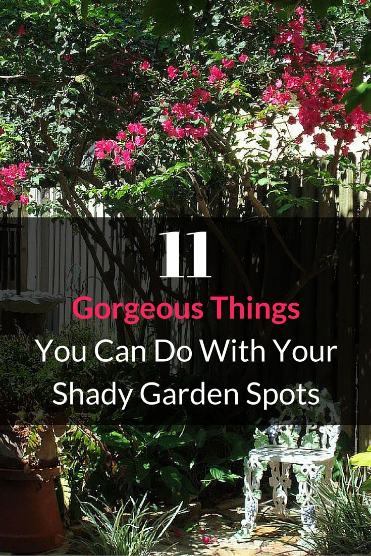 11 absolutely gorgeous things you can do with shady garden spots.