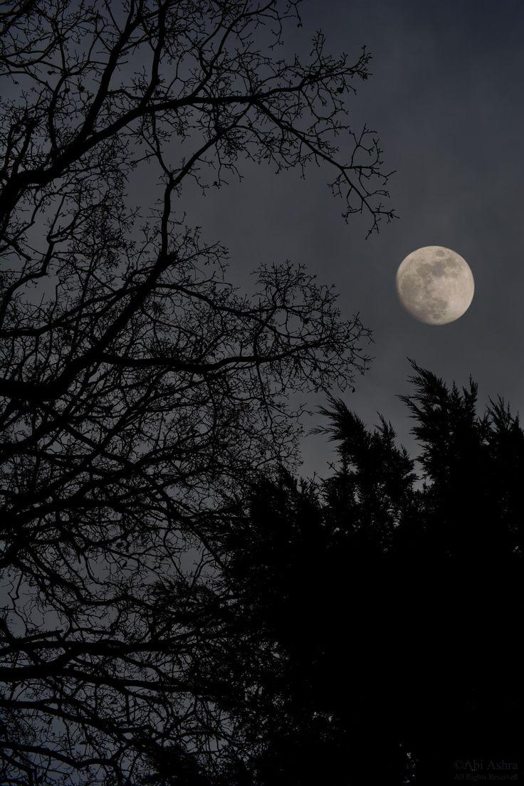 Ночь луна звезды человек фото большинство