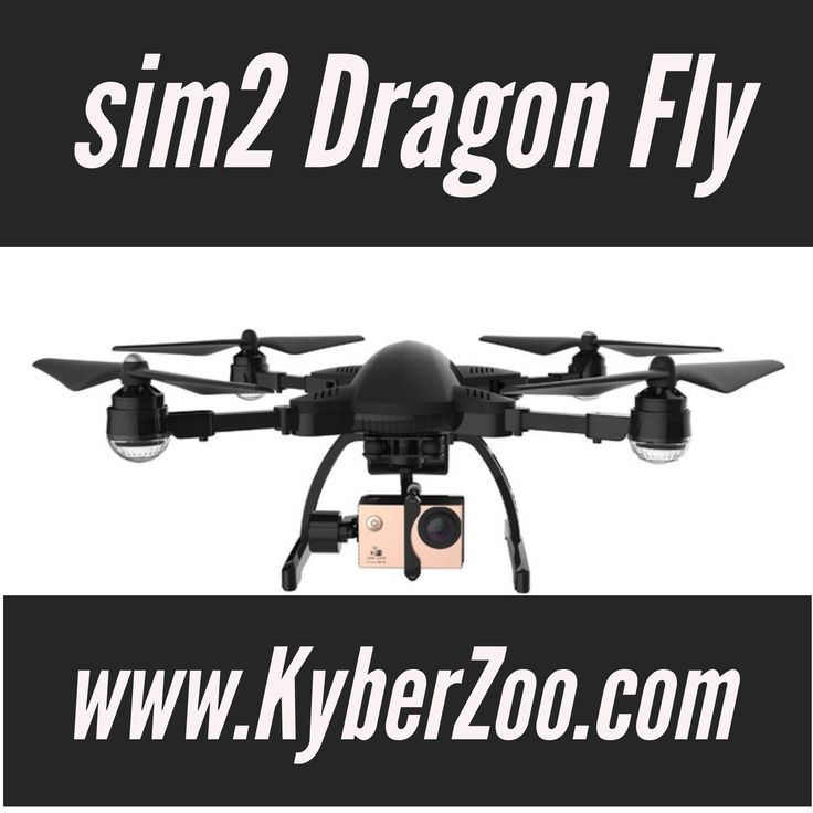 Sim 2 Dragonfly Drone