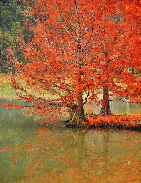 Spectacular Places: Lake Ginninderra in Canberra, Australia