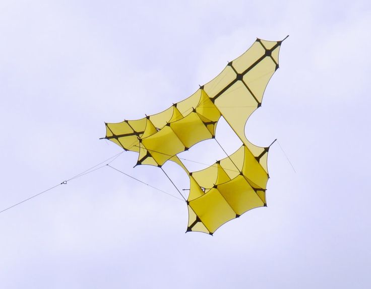 A large all-yellow Cody kite. The dark spars really show up on this recreation of an historical Box kite design. A good look! T.P. (my-best-kite.com)