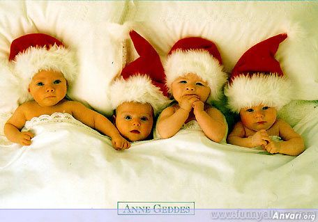 anne geddes...: Annegeddes, Christmas Cards, Photos, Anne Geddes, Babies, Idea, Santa Baby, Christmas Baby, Merry Christmas
