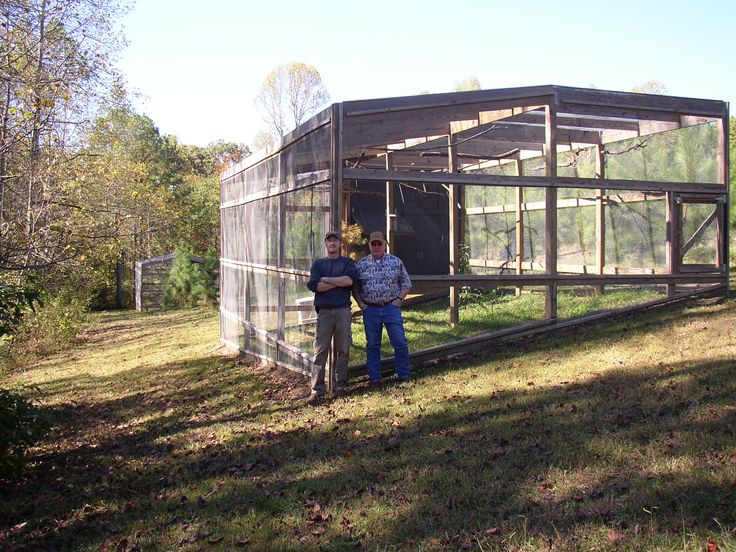 outdoor bird aviaries | The lab currently has four outdoor aviaries (6m x 9m x 3.5m); Left ...
